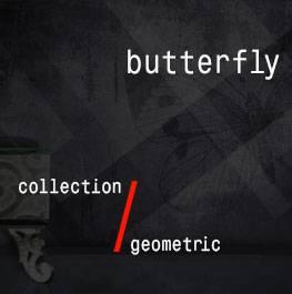 geometric / butterfly