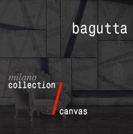 canvas / bagutta