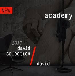 david / academy