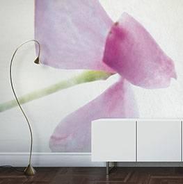 (Italiano) petals / lathy