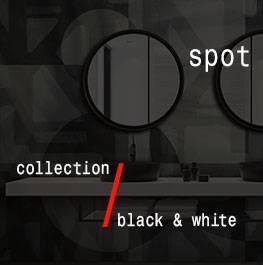 black & white / spot