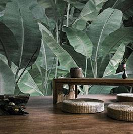 jungle / thai banano